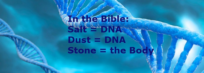 What is salt, dust, and stone in the Bible
